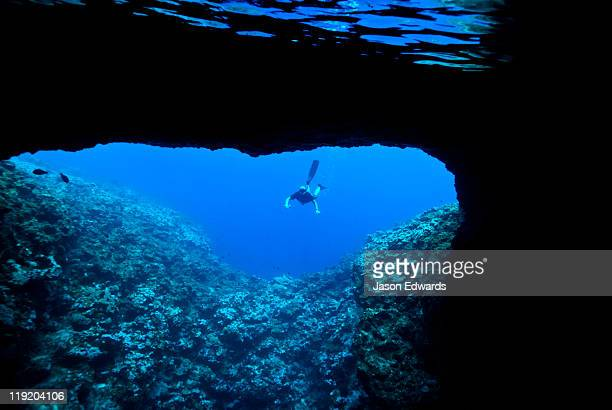A snorkeler tentatively examines the entrance to an underwater cave.