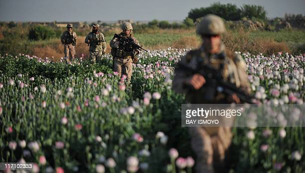 US Marines and Navy Gunnary Sergeant Nate Cosby Staff Sergeant Josh Lacey and Hospitalman 2 Daniel Holmberg from Border Adviser Team and Explosive...