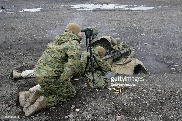 U.S. Marines fire an M107 special application scoped rifle at Camp Fuji, Japan.