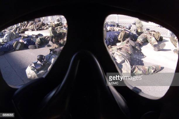 Marines participating in a simulated chemical attack lie strewn along a street during a realistic mass casualty drill December 20 2001 at an...