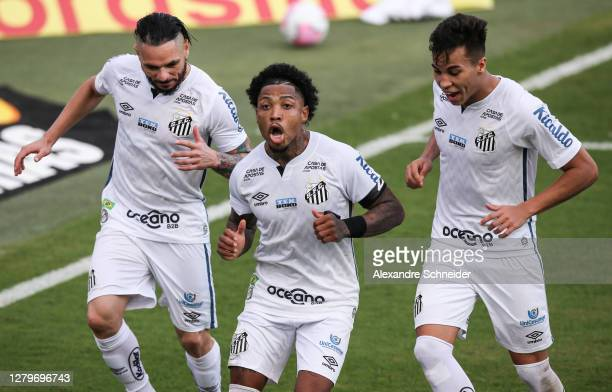Marinho of Santos celebrates with his team mates after scoring the second goal of their team during the match between Santos and Gremio as part of...