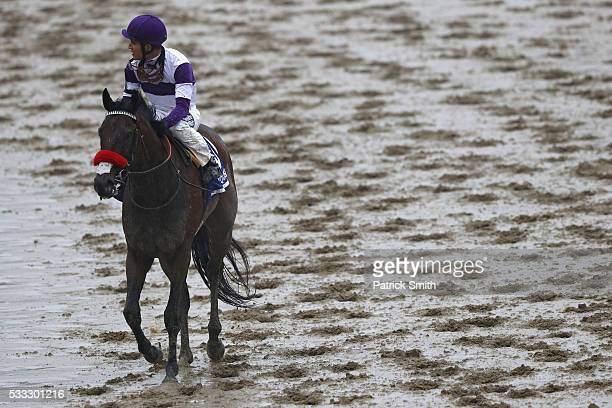 Mario Gutierrez jockey of Nyquist looks on after losing in the 141st running of the Preakness Stakes at Pimlico Race Course on May 21 2016 in...