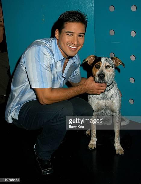 Mario Lopez during Mario Lopez on Set of Animal Planet Series 'Pet Star' at NBC Studios in Burbank California United States