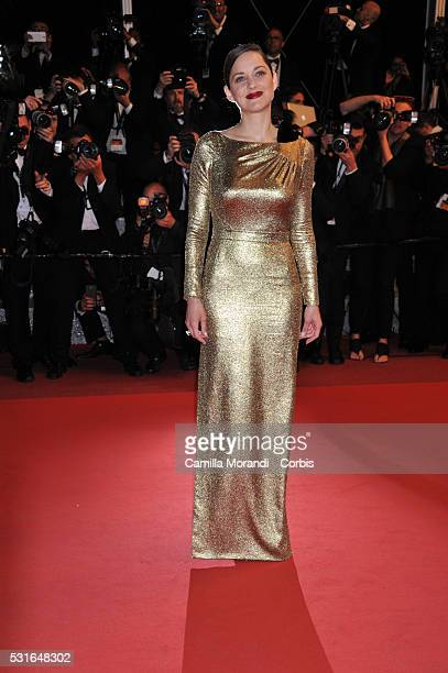 Marion Cotillard attends the The Nice Guys Red carpet at the annual 69th Cannes Film Festival at Palais des Festivals on May 15 2016 in Cannes France