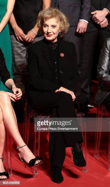 Marisa Paredes attend the Goya cinema awards candidates 2018 meeting at Casa de Correos on January 15 2018 in Madrid Spain