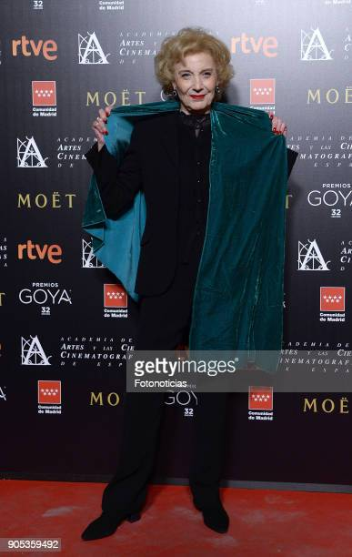 Marisa Paredes attends the 32nd Goya Awards Candidates Meeting at the Real Casa de Correos on January 15 2018 in Madrid Spain