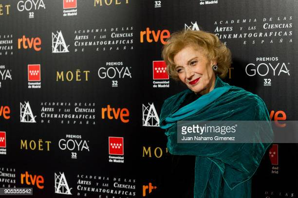 Marisa Paredes attends the Goya cinema awards candidates 2018 meeting at Casa de Correos on January 15 2018 in Madrid Spain
