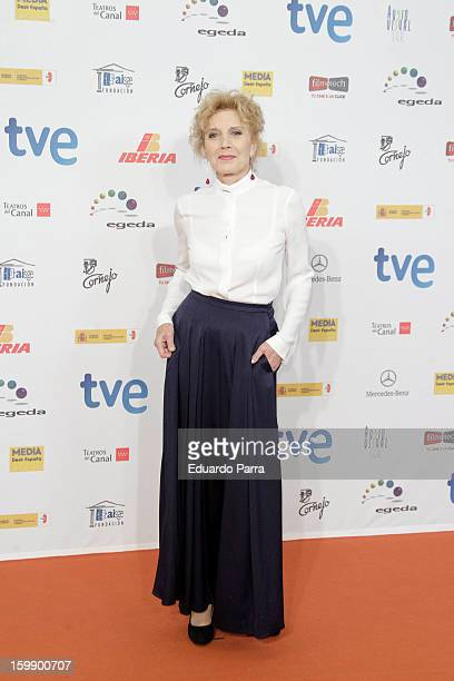 Marisa Pareeds attends Jose Maria Forque awards photocall at Canal theatre on January 22 2013 in Madrid Spain