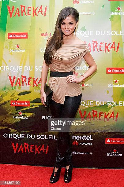 Marisol Gonzalez poses during the red carpet on the presentation of the new Cirque Du Soleil Show Varekai at the at Santa Fe Tent on September 20...