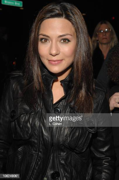 Marisol Nichols during Dreamgirls Los Angeles Premiere Red Carpet at Wilshire Theater in Los Angeles California United States