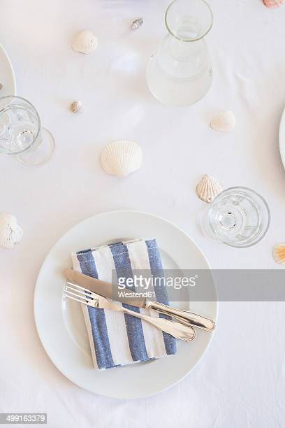 Maritime laid table with place setting and wine glasses, elevated view