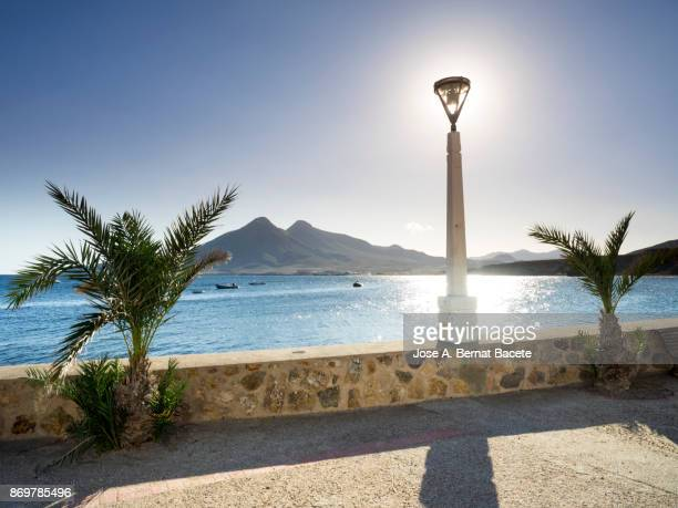 Maritime walk or street close to the sea with two palms and a lamppost from where one sees the sea and a mountain, Isleta del Moro, of the natural park of Cabo de Gata - Nijar, in Almeria,  Andalucia, Spain.