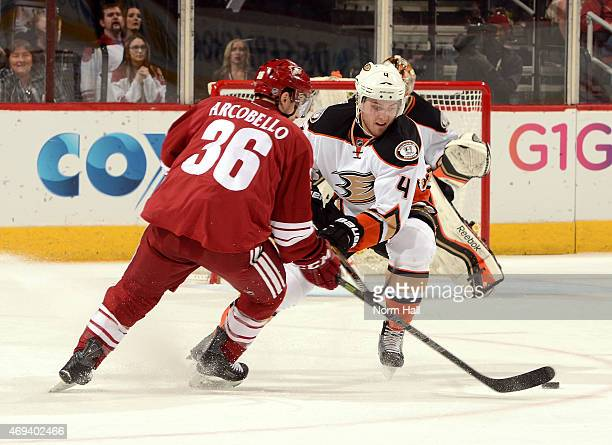 Mark Arcobello of the Arizona Coyotes brings the puck up ice while being defended by Cam Fowler of the Anaheim Ducks at Gila River Arena on April 11...