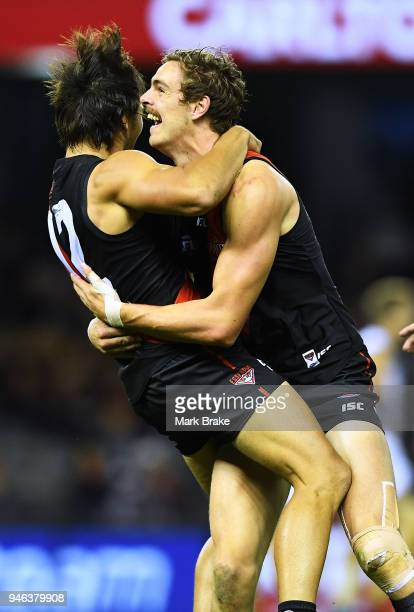 Mark Baguley of the Bombers celebrates a goal with Joe Daniher of the Bombers during the round four AFL match between the Essendon Bombers and the...