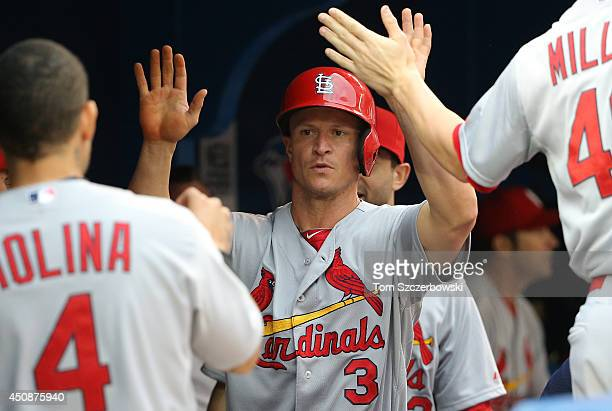 Mark Ellis of the St Louis Cardinals is congratulated by teammates after scoring a run in the second inning during MLB game action against the...