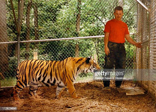 Mark Forsythe Tyler's father stands in a cage with Shabu his pet Bengal tiger near Apex in 1995 just weeks before the tiger mauled his 3yearold son