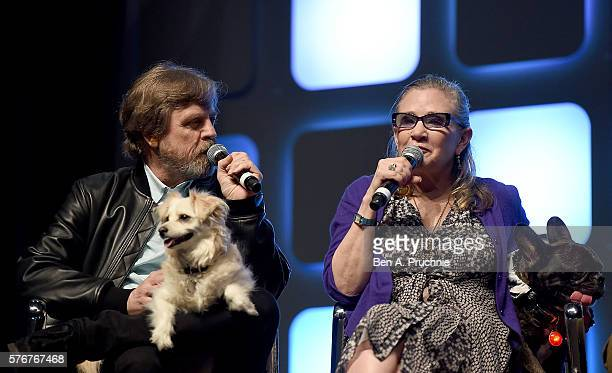 Mark Hamill Carrie Fisher and her dog Gary on stage during Future Directors Panel at the Star Wars Celebration 2016 at ExCel on July 17 2016 in...