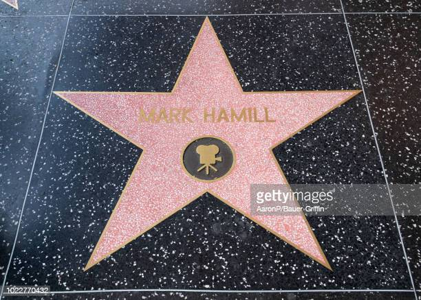 Mark Hamill's star on the Walk of Fame on Hollywood Blvd Hamill has recently advocated for the replacement of Donald Trump's star with one for Carrie...