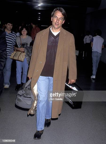 Mark Harmon during Mark Harmon Sighting at Los Angeles International Airport May 16 1995 at LAX in Los Angeles California United States