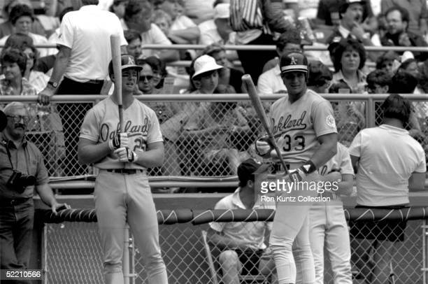 Mark McGwire and Jose Conseco of the Oakland Athletics stand on deck during a game against the Cleveland Indians on June 27 1987 at Municipal Stadium...