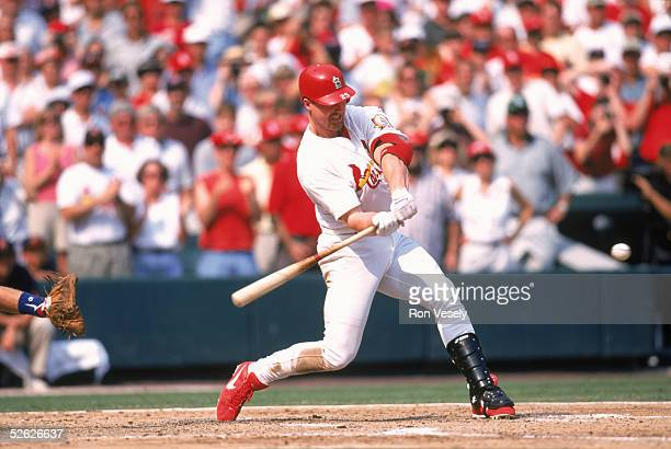 Mark McGwrie of the St Louis Cardianls bats during a season game at Busch Stadium in St Louis Missouri on September 7 1998 Mark McGwire played for...