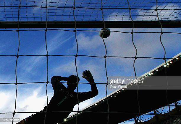 Mark Paston of Wellington dives to make a save during the round 21 ALeague match between Sydney FC and Wellington Phoenix at Sydney Football Stadium...