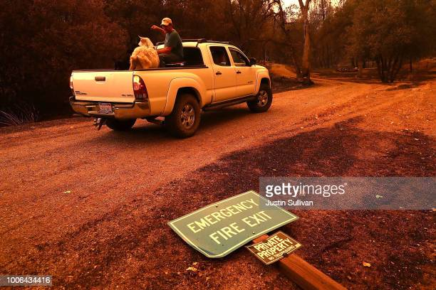 Mark Peterson sits in the back of a pickup with goats that he saved from his home that was destroyed the Carr Fire on July 27 2018 in Redding...