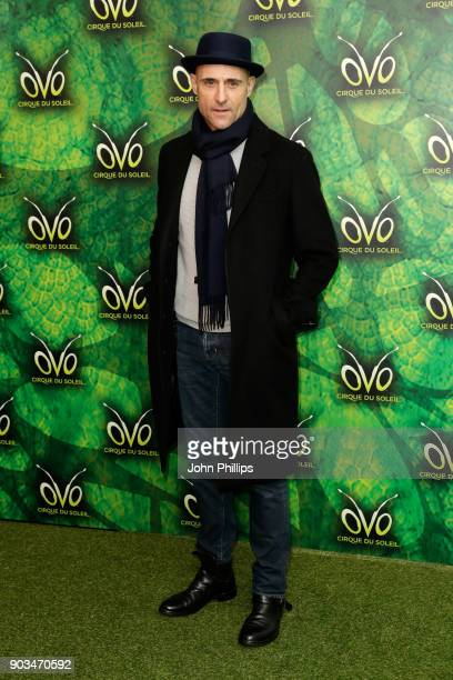 Mark Strong attends the Cirque du Soleil OVO premiere at Royal Albert Hall on January 10, 2018 in London, England.