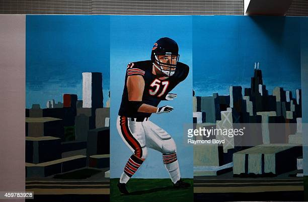 Mark Ulriksen's painted mural of former Chicago Bears player Dick Butkus inside the Chicago Bears' United Club at Soldier Field home of the Chicago...