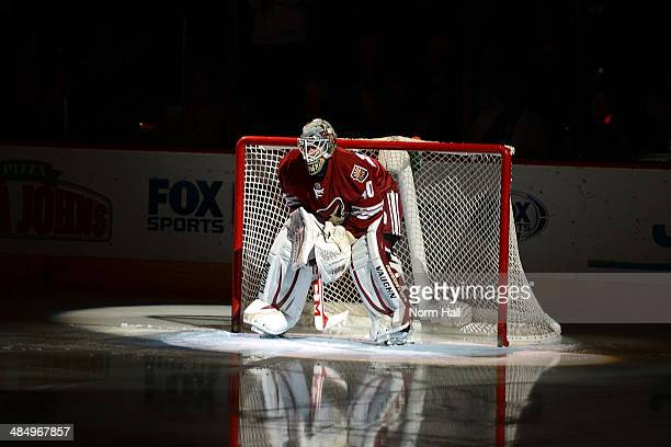 Mark Visentin of the Phoenix Coyotes gets ready for his first NHL start against the San Jose Sharks at Jobingcom Arena on April 12 2014 in Glendale...