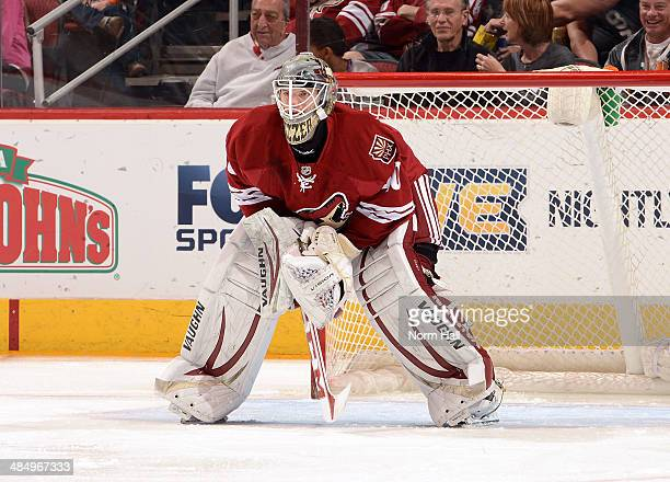 Mark Visentin of the Phoenix Coyotes gets ready to make a save against the San Jose Sharks at Jobingcom Arena on April 12 2014 in Glendale Arizona It...