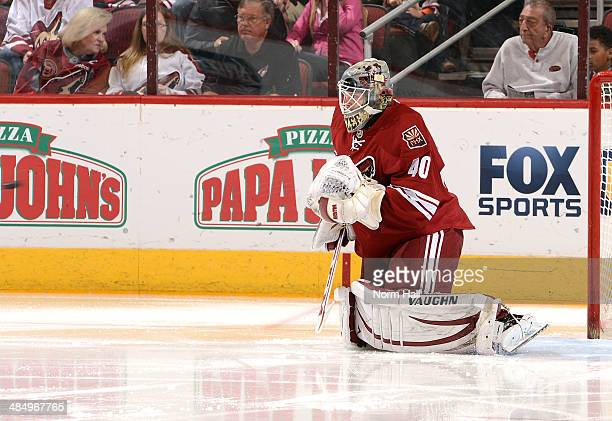 Mark Visentin of the Phoenix Coyotes makes his first NHL save against the San Jose Sharks at Jobingcom Arena on April 12 2014 in Glendale Arizona