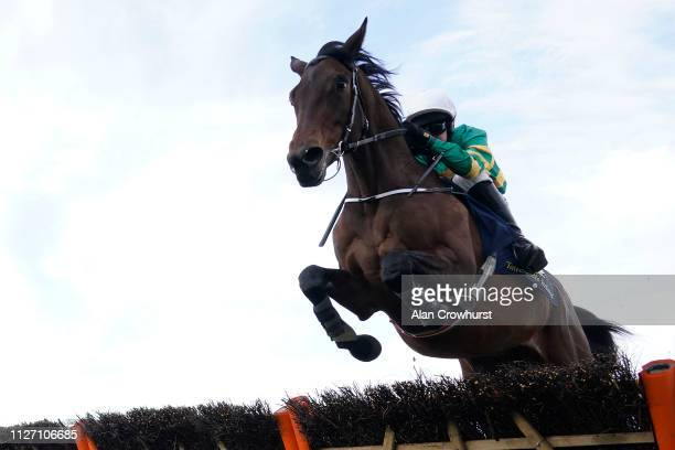 Mark Walsh riding Sir Erec clears the last jump to win The Tattersalls Ireland Spring Juvenile Hurdle at Leopardstown Racecourse on February 03 2019...