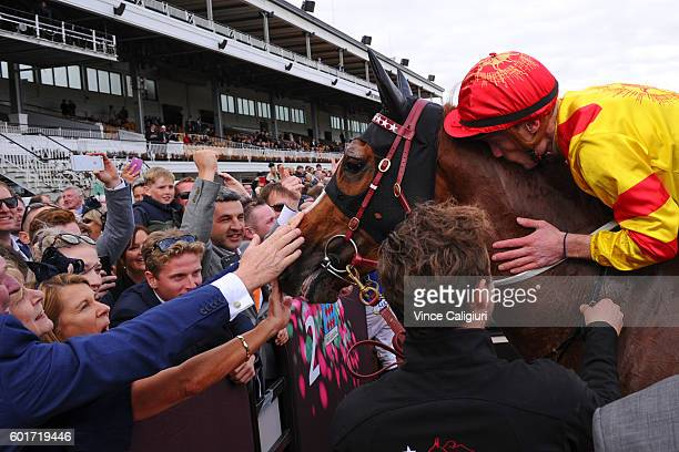 Mark Zahra kisses Palentino after winning in Race 7 Makybe Diva Stakes during Melbourne Racing at Flemington Racecourse on September 10 2016 in...