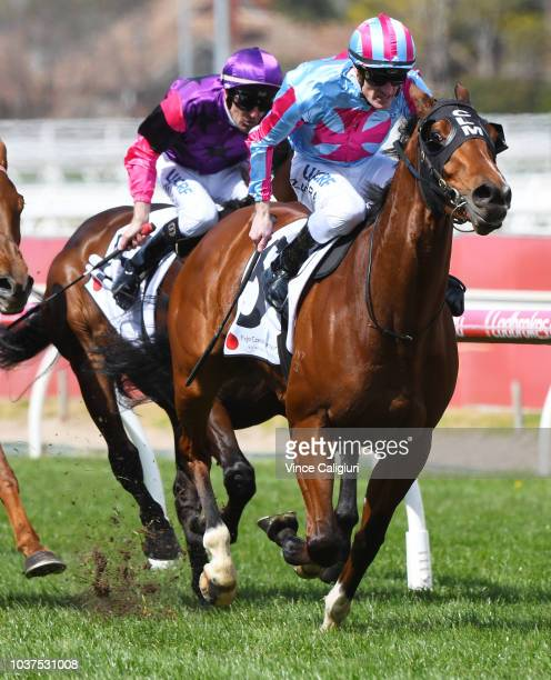 Regan Bayliss riding Spending To Win winning Race 5 Grassroots Sports Club for Mirabel Handicap during Melbourne Racing at Caulfield Racecourse on...