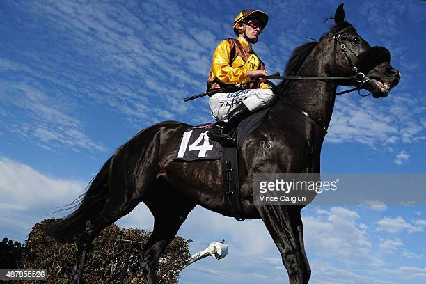 Mark Zahra riding Alpine Eagle before Race 7 the Makybe Diva Stakes during Melbourne Racing at Flemington Racecourse on September 12 2015 in...