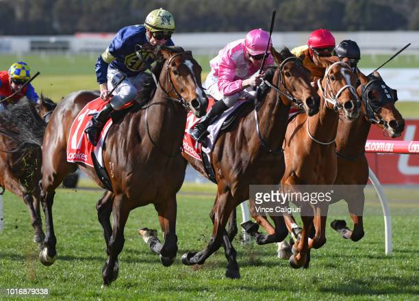 Mark Zahra riding Declarationofheart winning Race 6 during Melbourne Racing at Sandown Hillside on August 15 2018 in Melbourne Australia