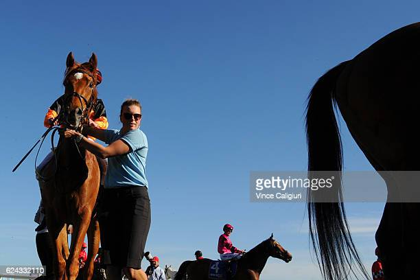 Mark Zahra riding Duibio after winning Race 10 during Ballarat Cup day at Ballarat Racecourse on November 19 2016 in Ballarat Australia