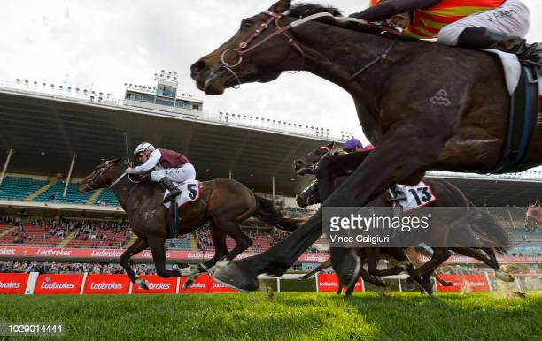 Mark Zahra riding Land of Plenty winning Race 7 during Melbourne Racing at Moonee Valley Racecourse on September 8 2018 in Melbourne Australia