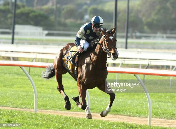 Mark Zahra riding Le Don De Vie winning Race 9, the Sungold Milk Warrnambool Cup, during the Warrnambool Jumps Carnival at Warrnambool Racing Club on...