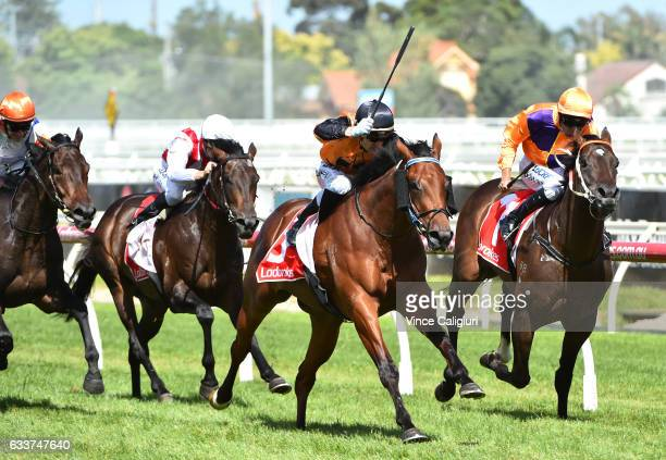Mark Zahra riding Legless Veuve wins Race 7 Manfred Stakes during Melbourne Racing at Caulfield Racecourse on February 4 2017 in Melbourne Australia