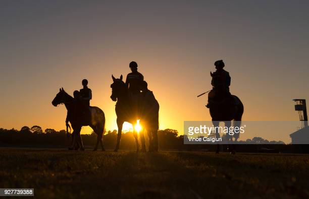 Mark Zahra riding Merchant Navy after a trackwork session at Sandown Lakeside on March 6 2018 in Melbourne Australia Merchant Navy is favourite for...