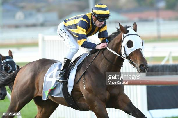 Mark Zahra riding Over The Sky winning Race 10, the No Fuss Event Hire Bm64 Handicap, during the Warrnambool Jumps Carnival at Warrnambool Racing...