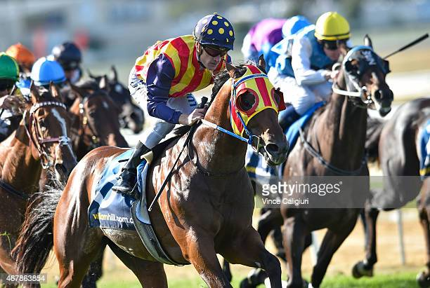 Mark Zahra riding Under the Louvre wins Race 8 the Hareeba Stakes during Melbourne Racing at Mornington Racecourse on March 28 2015 in Melbourne...