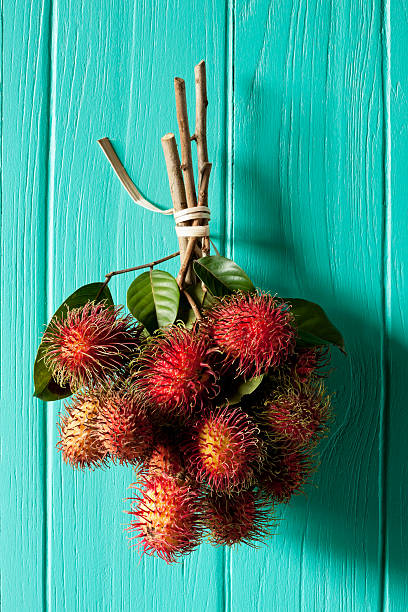 Market fresh Thai Rambutans hanging on old turquoise wooden wall.