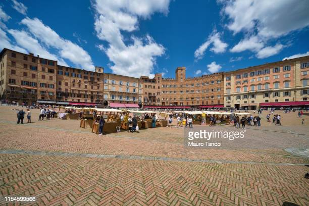 market in siena, piazza del campo, tuscany - mauro tandoi stock photos and pictures