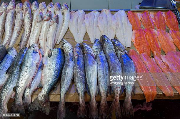 Market scene with fresh fish for sale in the market hall in Angelmo Puerto Montt in southern Chile