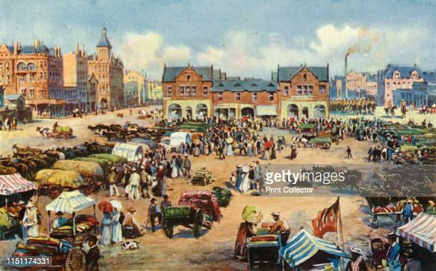 """Market Square, Johannesburg', 1901. View of market stalls and cattle in Johannesburg in the South African Republic, . From """"The Life and Deeds of..."""