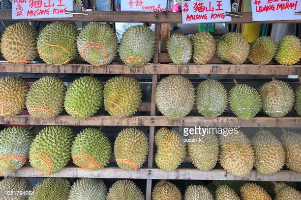 market stall filled with musang king durian. - durian stock pictures, royalty-free photos & images