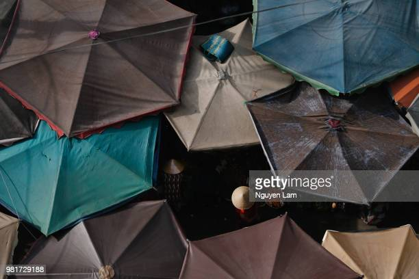 market umbrellas - free walpaper stock photos and pictures